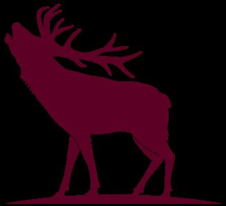 Elk and Mule Deer